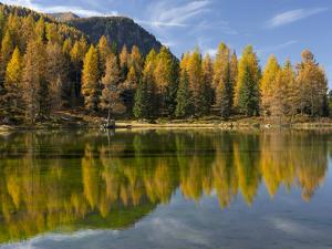 Lago San Pellegrino during fall at Passo San Pellegrino in the Dolomites. Italy. by Martin Zwick