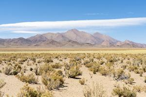 Landscape near the salt flats Salinas Grandes in the Altiplano, Argentina. by Martin Zwick