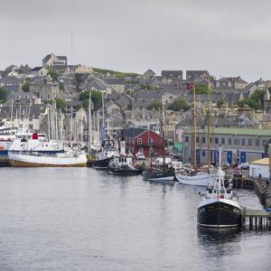 Lerwick. the Harbor. Scotland, Shetland Islands by Martin Zwick