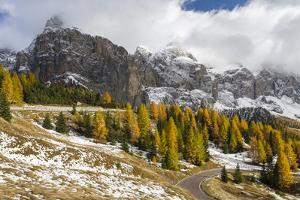 Mountain Road Leading Up to Grodner Joch, Passo Gardena from Groeden Valley, Val Badia in Dolomites by Martin Zwick