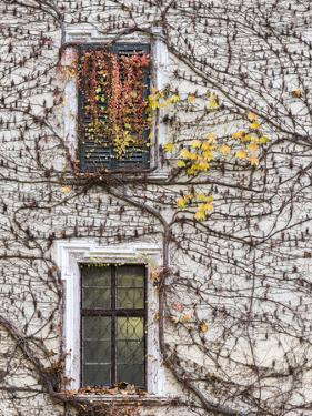 Neustift Monastery Courtyard During Autumn. South Tyrol, Italy by Martin Zwick