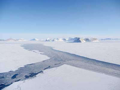 Sea ice with icebergs in the Baffin Bay, between Kullorsuaq and Upernavik