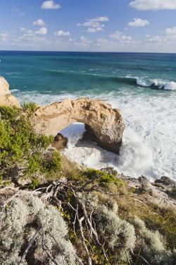 The Arch, Great Ocean Road, Shipwreck Coast, Australia by Martin Zwick