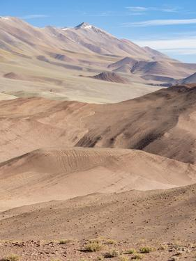 The Argentinian Altiplano along Routa 27 between Pocitos and Tolar Grande, Argentina by Martin Zwick