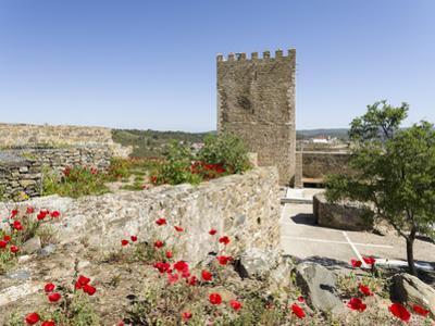 The medieval castle from Moorish times . Mertola, Alentejo. Portugal by Martin Zwick