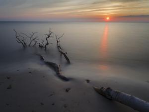 The Weststrand on the Darss Peninsula. West-Pomerania Lagoon Area by Martin Zwick