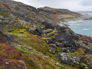 Tundra near glacier Eqip (Eqip Sermia) in western Greenland, Denmark by Martin Zwick