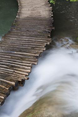 Typical Plank Path, Plitvice Lakes, Plitvicka Jezera, Croatia by Martin Zwick