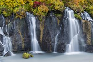 Waterfall Hraunfossar with colorful foliage during fall. Northern Iceland by Martin Zwick