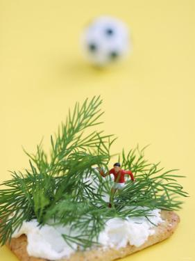 Miniature Footballer Fighting His Way Through Forest of Dill by Martina Schindler