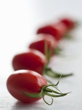 Plum Tomatoes in a Row by Martina Schindler
