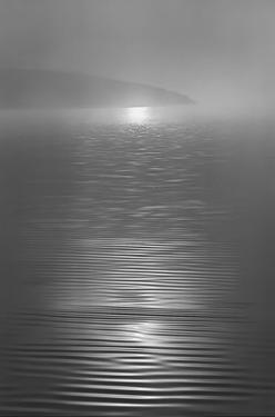 Nicasio Sunrise by Marty Knapp