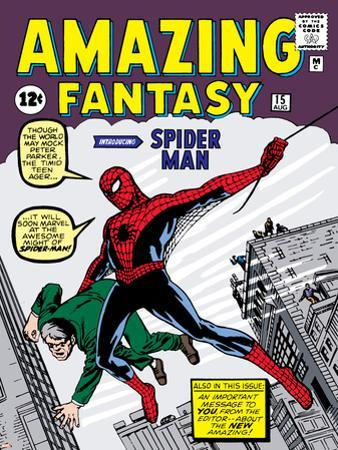 Marvel Comics Retro: Amazing Fantasy Comic Book Cover No.15, Introducing Spider Man