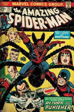 Marvel Comics Retro: The Amazing Spider-Man Comic Book Cover No.135, Return of the Punisher! (aged)