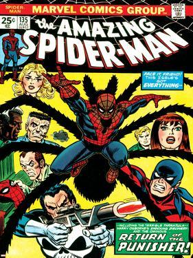 Marvel Comics Retro: The Amazing Spider-Man Comic Book Cover No.135, Return of the Punisher!