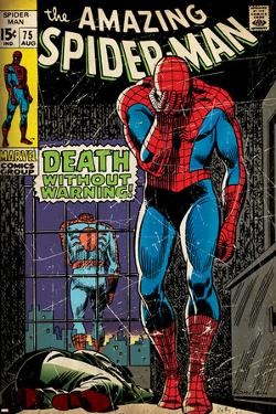 Marvel Comics Retro: The Amazing Spider-Man Comic Book Cover No.75, Death Without Warning! (aged)