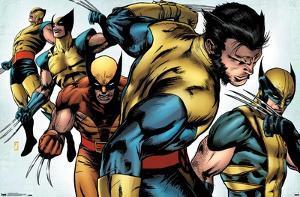 Marvel Comics - Wolverine - Evolution
