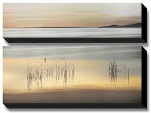 Golden by Marvin Pelkey
