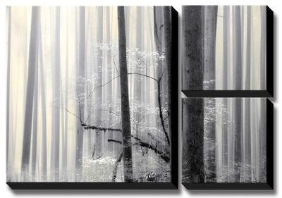 Still Silence by Marvin Pelkey