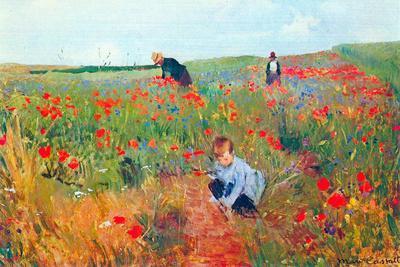 Mary Cassatt Poppy In The Field