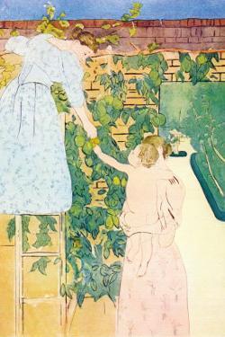 Picking Fruit by Mary Cassatt