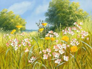 Cuckoo Flowers by Mary Dipnall
