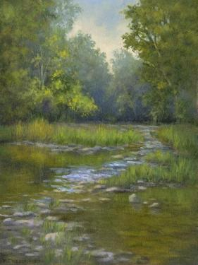O'Bannon Creek by Mary Jean Weber