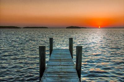Morning Glory by Mary Lou Johnson