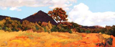 Summer Vista by Mary Silverwood