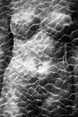 Torso Light Pattern II by Mary Woodman
