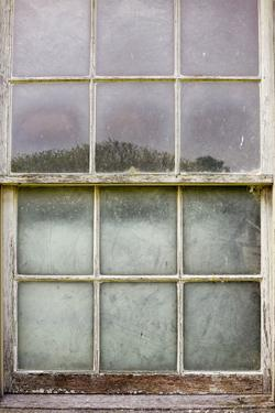 Window Landscape by Mary Woodman