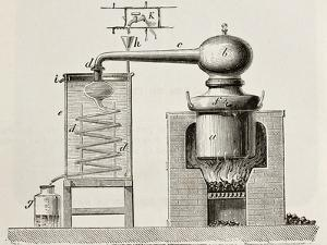 Old Schematic Illustration Of A Brass Alembic by marzolino