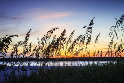 https://imgc.allpostersimages.com/img/posters/masonboro-sunset-i_u-L-Q11UPHD0.jpg?p=0