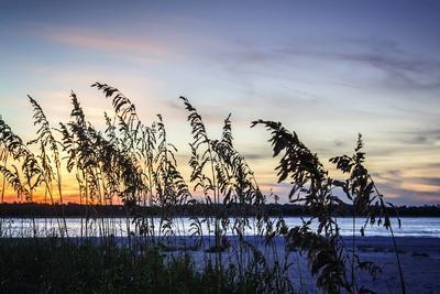https://imgc.allpostersimages.com/img/posters/masonboro-sunset-ii_u-L-Q11UPH50.jpg?p=0