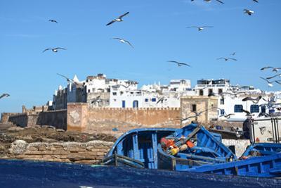 Essaouira by Massimo Beccegato