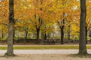 Parc De Bruxelles (Brussels Park) in Autumn (Fall) by Massimo Borchi