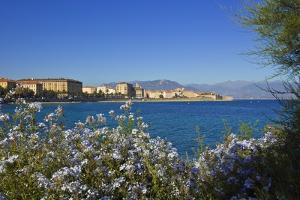 View of Town from Lantivy Seaside, Ajaccio, Corsica, France by Massimo Borchi