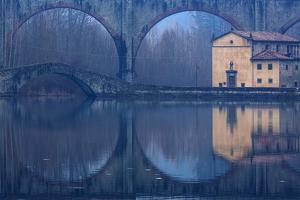 Untitled by Massimo Della Latta
