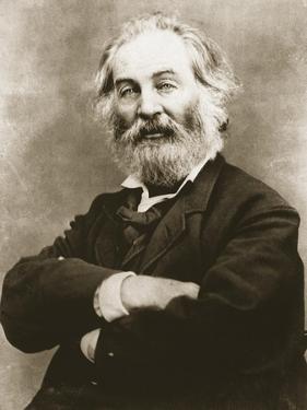 Walt Whitman by Mathew Brady