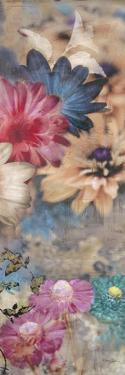 Cassandra's Garden 3 by Matina Theodosiou