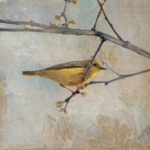 Golden Summer Song by Matina Theodosiou