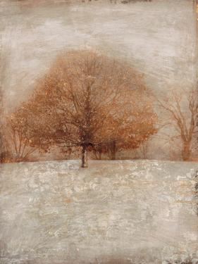 Rustic Gold Oak by Matina Theodosiou