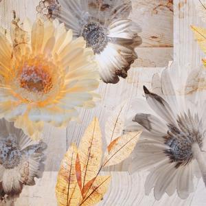 Sunny Days by Matina Theodosiou