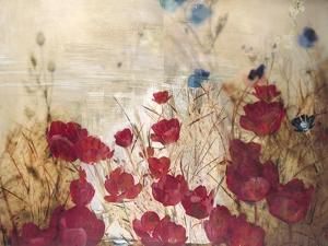 Tulip Garden by Matina Theodosiou