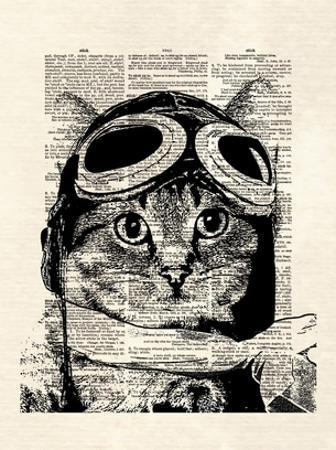 Captain Kitty by Matt Dinniman