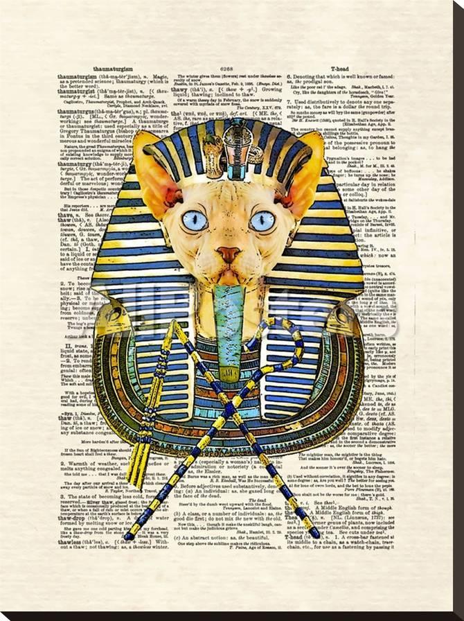 Cat Pharaoh