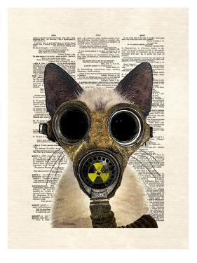 Fallout by Matt Dinniman