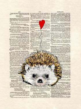 Hedgehog by Matt Dinniman