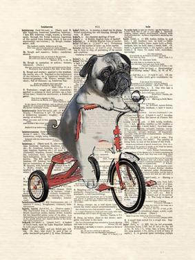 Mike The Trike by Matt Dinniman