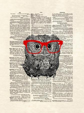 Smarty Owl by Matt Dinniman